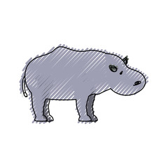 colored  hippopotamus doodle over white background  vector illustration