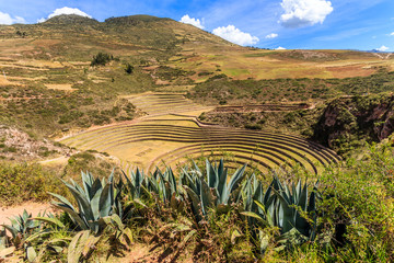 Moray circles, round shaped historic Incan agriciltural site on the hills with agava leaves in the foreground, Urubamba provnce, Peru