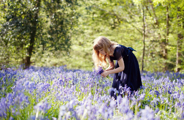 Young girl with long blonde hair picking bluebells