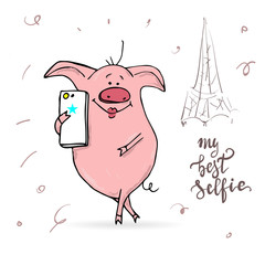cute pig with smart-phone.