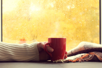 warming home atmosphere/ red mug of hot drink in hand, when behind is window is rain in autumn