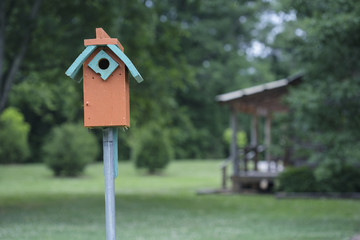Eastern Bluebird house with a cabin porch in background