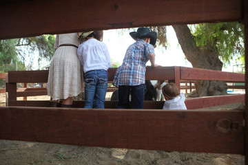 backsides of siblings standing on fence petting horses