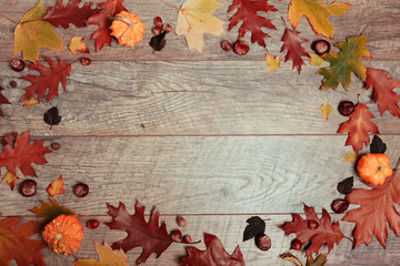 Autumn arrangement of colorful leaves, pumpkin, acorn, chestnut fruit on a wooden background with free space for text. Top view, season concept, toned retro effect, flat lay