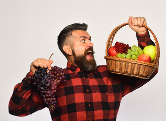 Man with beard holds basket with fruit and purple grapes
