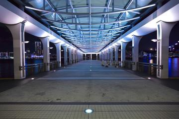 Hong Kong Victoria harbor promenade port at night perspective