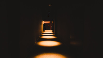 Empty dark corridor in apartment building in perspective view with copy space.