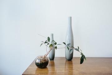 desktop decor with plant
