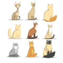 Cat different breeds set, cute pet animal vector Illustrations