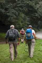 Senior mountaineers on a hike through the forest