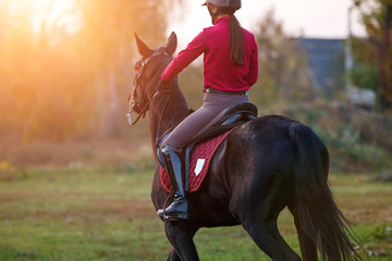 Young rider girl on bay horse in the autumn park at sunset. Teenage girl riding horse in park