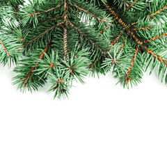 Background with christmas tree branches and space for text  for Christmas card, banner, flyer, wallpapers .