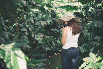 Asian woman travel and take photo in coffee farm in forest