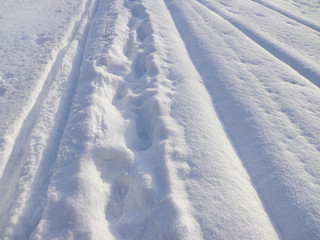 The tracks on the snow