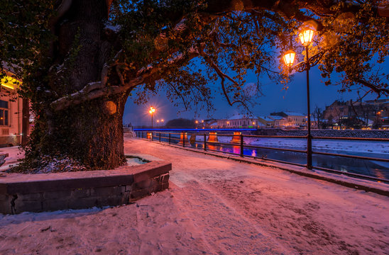 huge tree and lantern on the winter embankment. beautiful evening on the river with some ice and snow on the shore