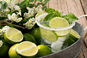 Vodka and Soda Cocktail with Lime and Mint