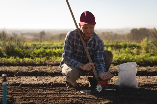 Farmer adding seeds in sowing tool