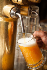 A fresh draft beer or lager being prepared in a bar or brewery