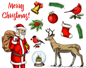 engraved hand drawn in old sketch and vintage style for label. Merry Christmas or xmas, New Year Collection. winter holiday decoration. santa claus with jingle bell and deer, bird bullfinch cardinal.