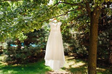 beige wedding dress hang on tree branch in garden