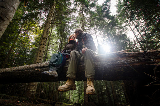 young hikers couple having good time in forest, sitting on old fallen tree