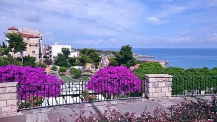 Espagne Tarragone Tarragona Catalogne Catalunya bougainvillier vue sur mer ciel bleu
