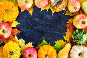 Autumnal frame with colorful pumpkins, apples and fallen leaves on dark background with copy space for text in center