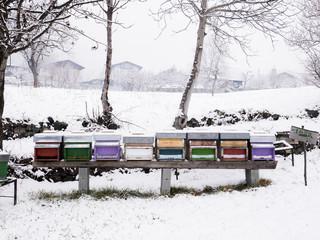 Wooden beehives in a snowy field