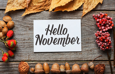 Hello november. frame of autumn decor Poster card with sunlight filter and toned grunge image