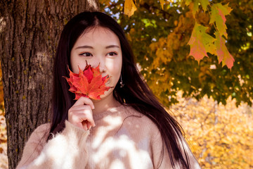 A young oriental girl is holding red leaves in front of her face