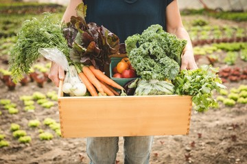Female farmer holding crate full of vegetables in field