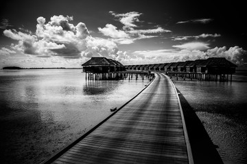 Black and white nature landscape. Luxury water villas in a tropical beach resort