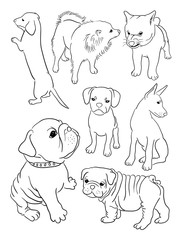 Dog line art, vector, illustration. Good use for symbol, logo, web icon, mascot, sign, or any design you want.