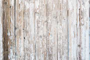 Wooden background of old fence with rusty nails. Shabby texture of white colored wooden boards.