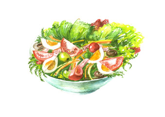 A plate of vegetable salad, tomatoes, greens, cucumbers, onions, olives, eggs, dill, parsley, cherry tomatoes. Handmade drawing on white isolated background.