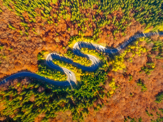 Aerial view of curvy road through autumn colored forest