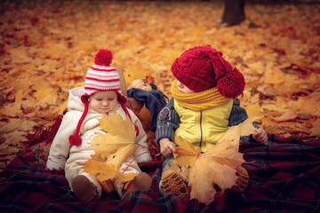 Little attractive kids play in the autumn park.