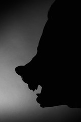 Wolf Mask Silhouette