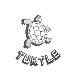 an illustration consisting of a turtle image in the form of a symbol or logo