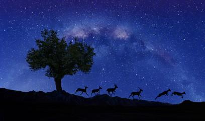 paisaje nocturno de las montañas