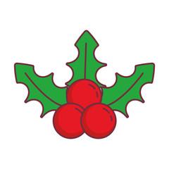 mistletoe icon image