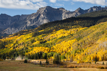 The Scenic Beauty of the Colorado Rocky Mountains - Autumn on the Dallas Divide