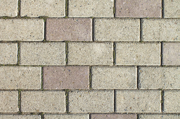 Wall of gray and purple bricks for the background.