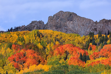 Kebler Pass - Autumn Scenery in the Rocky Mountains of Colorado.