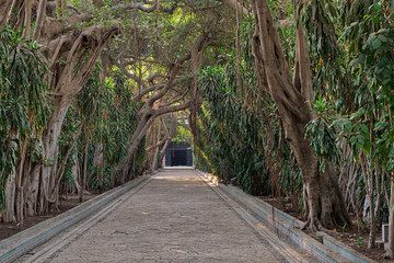 Passage through trees leading to closed door at the public park of The Manial Palace of Prince Mohammed Ali Tewfik, Cairo, Egypt