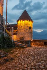 Bled Castle (Blejski grad) in Bled