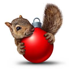 Christmas Cute Squirrel