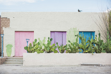 House with pastel colored doors and cactus