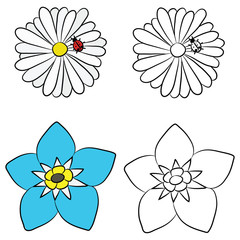 Flat Drawings of Chamomile and Forget-me-Not