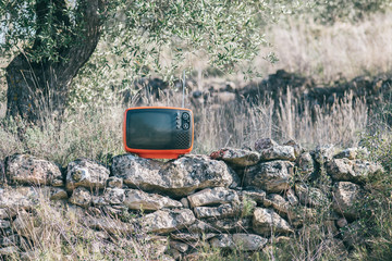 television on nature